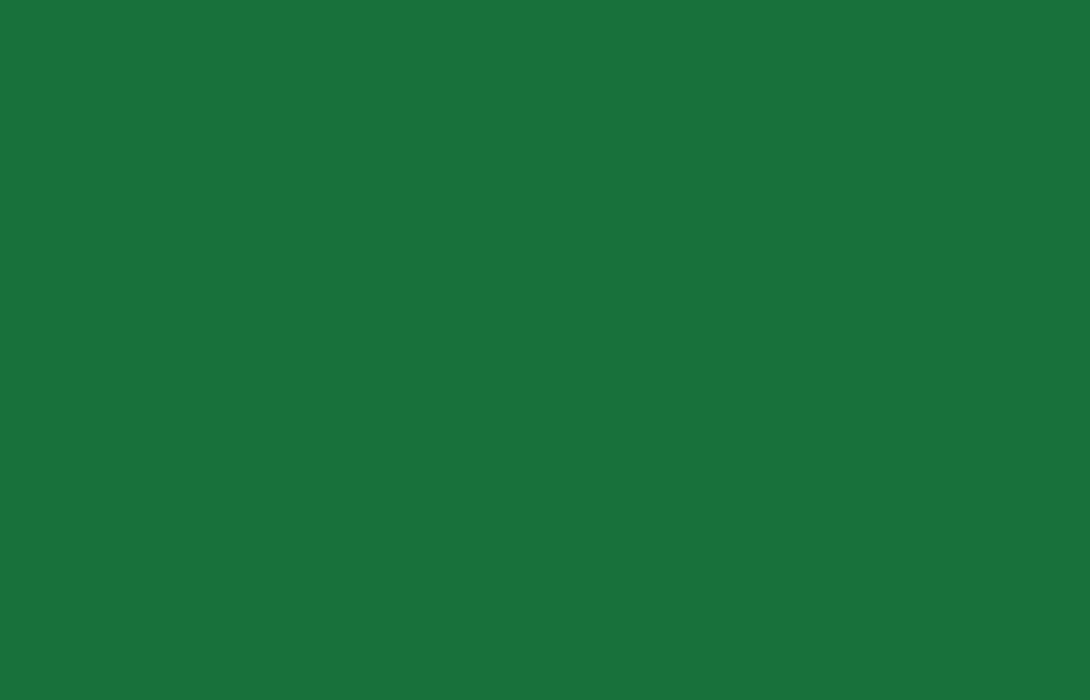 Mr Green Auszahlungsdauer