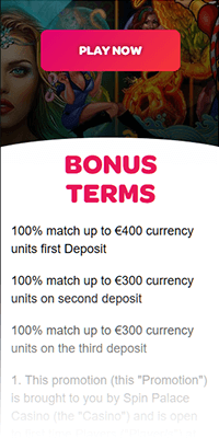SpinPalace Bonus Terms